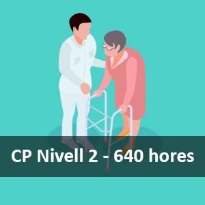 CP Atenció Sociosatintària a Persones en el Domicili